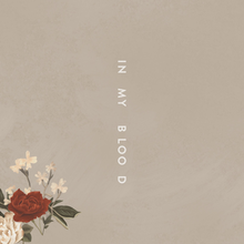 220px-Shawn_Mendes_In_My_Blood